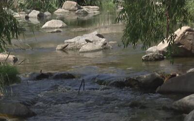 Varías áreas del río Los Ángeles estarán abiertas durante el fin de sema...