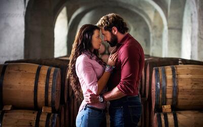 Demuestra cuánto sabes de la telenovela 'Vino el amor'