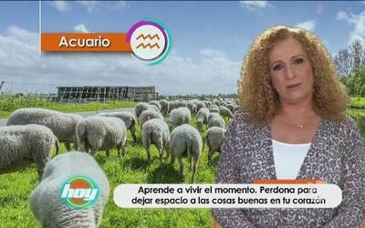 Mizada Acuario 23 de mayo de 2016