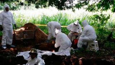 Los expertos dijeron que siguen trabajando en el examen de los restos y...