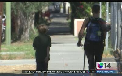 Surge el primer caso de Enterovirus D-68 en San José