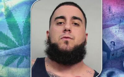 Presentan en corte a acusado de tener unas 80 libras de plantas de marih...