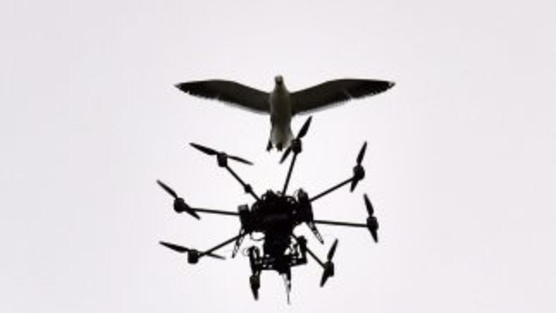 Amazon está desarrollando un modelo de distribución con drones