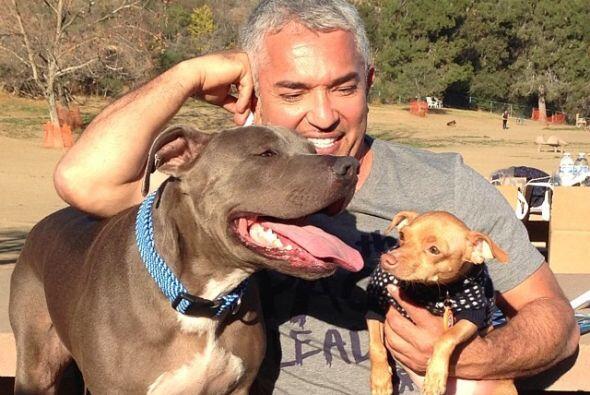 César Millán, el encantador de perros.