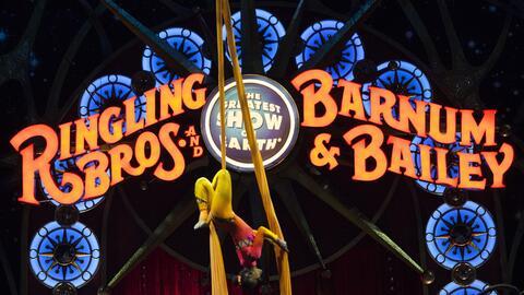 El circo Ringling Bros. y Barnum & Bailey anuncia que cerrará después de...