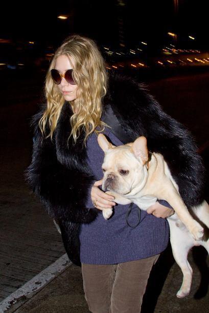 ¡Ashley Olsen está segura de que su adorable y hermoso Bulldog francés e...