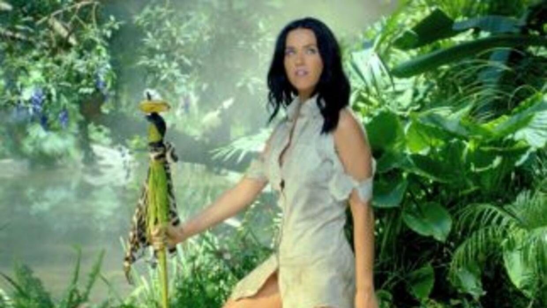 Katy Perry le encanta la limpieza y el orden en su casa.