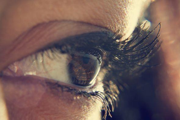 """El iris es lo que conocemos como """"el color del ojo"""" y rodea a la pupila...."""