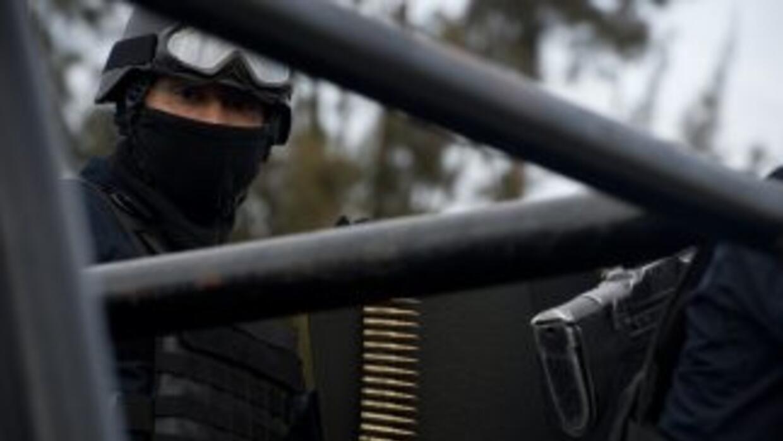 Fuerzas de seguridad en Tamaulipas.