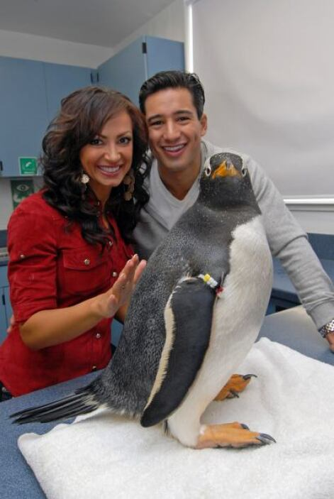 """Más adelante, Lopez salió durante tres años con la bailarina de """"Dancing..."""