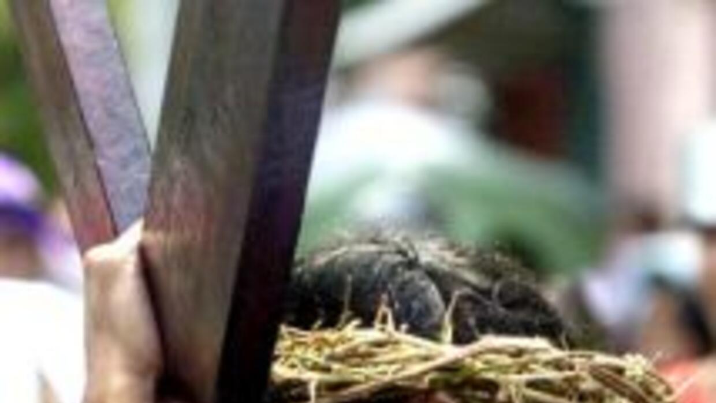 Los fieles católicos celebran con crucifixiones y flagelaciones la pasió...