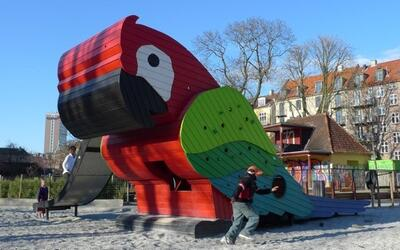 playground parrot
