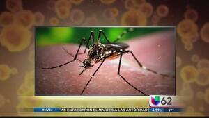 Autoridades confirman primer caso de zika en Austin