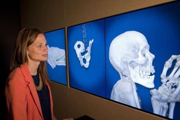 El museo utilizó las últimas tecnologías de Tomogra...
