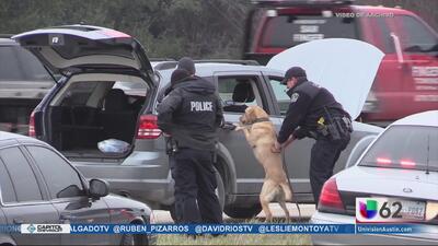 Lanzan línea telefónica para reportar actividad relacionada con narcóticos en el condado Bastrop