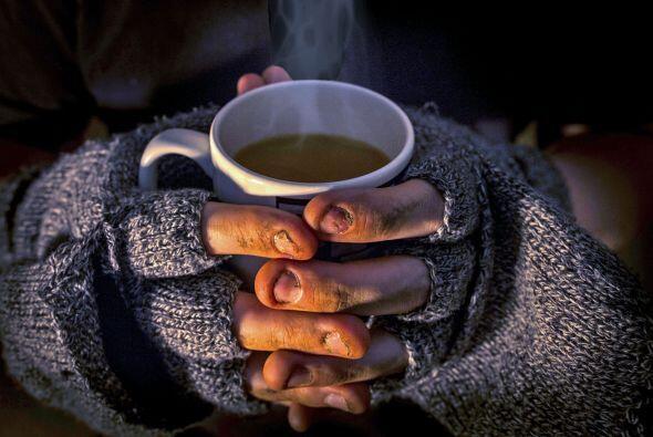 Para muchos, una taza de café es un despertador, una capricho, un gusto,...