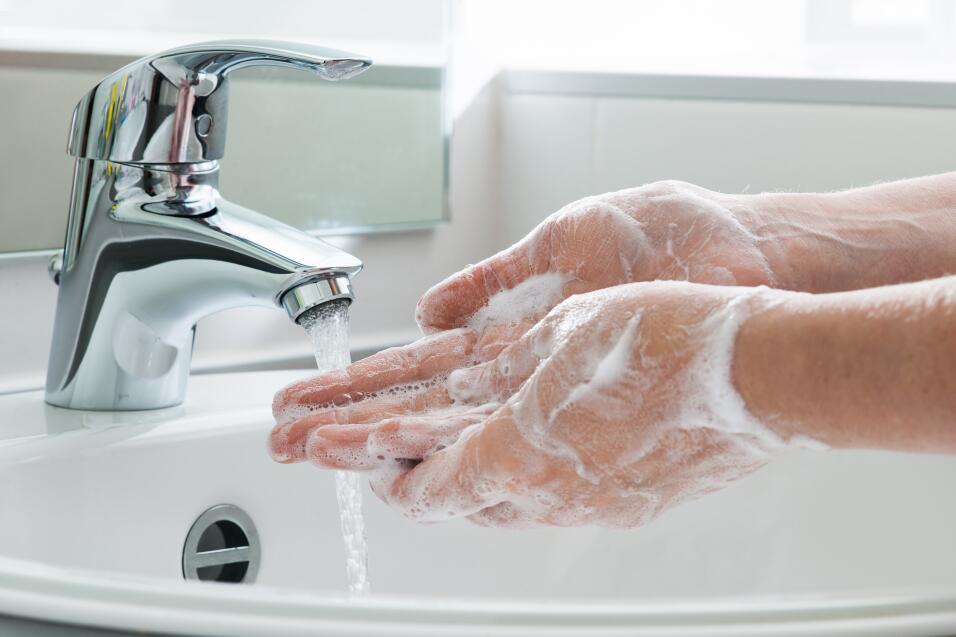 salud manos bacterias