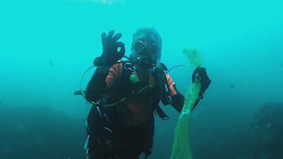 Una red se atascó en la boca de este tiburón y buzos le salvaron la vida