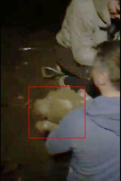 Suki y Sue regresaban de un paseo cuándo el perrito cayó a un pozo muy p...