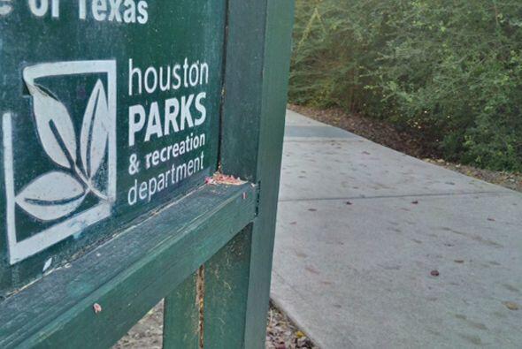 Cadaver en parque