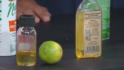 ¿Cómo evitar picaduras de mosquitos con productos que no afecten el medio ambiente?