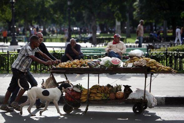 Dos hombres arrastran una carretilla cargada de frutas y vegetales, por...