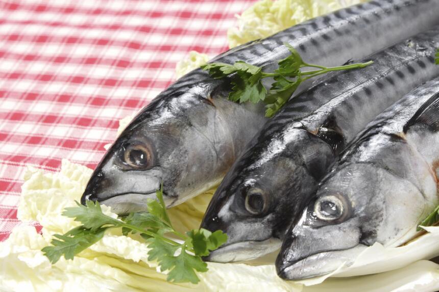 Al igual que las nueces, los pescados, en particular el salmón y las sar...