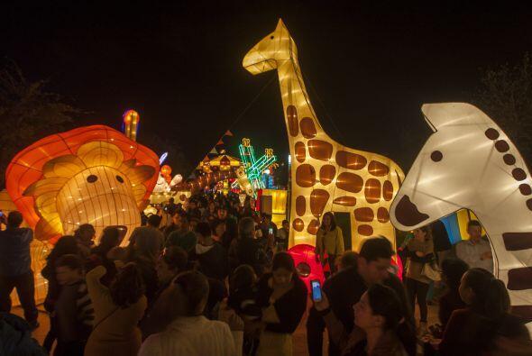 Es la primera vez que el festival Luminasia se lleva a cabo en América L...
