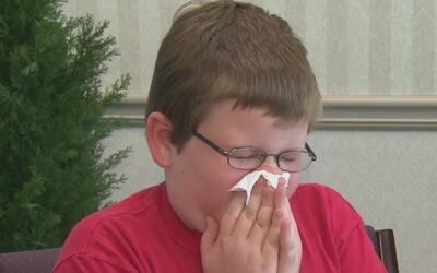 ¿Cómo saber si su hijo sufre una alergia o un resfriado?