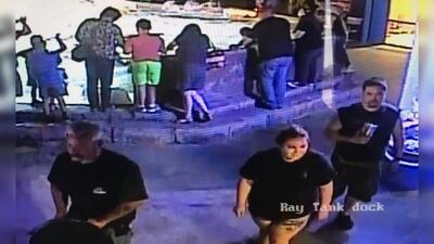 En fotos: Tres sospechosos se roban a un tiburón cornudo en un acuario de San Antonio