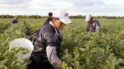 Los trabajos ganados siguen siendo insuficientes para compensar la reces...