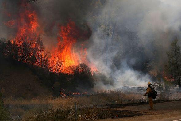 Las llamas se queman a través de un bosque mientras los bomberos tratan...