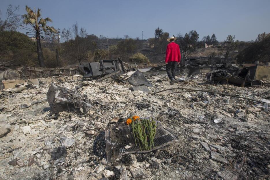 Mark Rippey dejó unas flores en el lugar donde falleció su padre, en una...