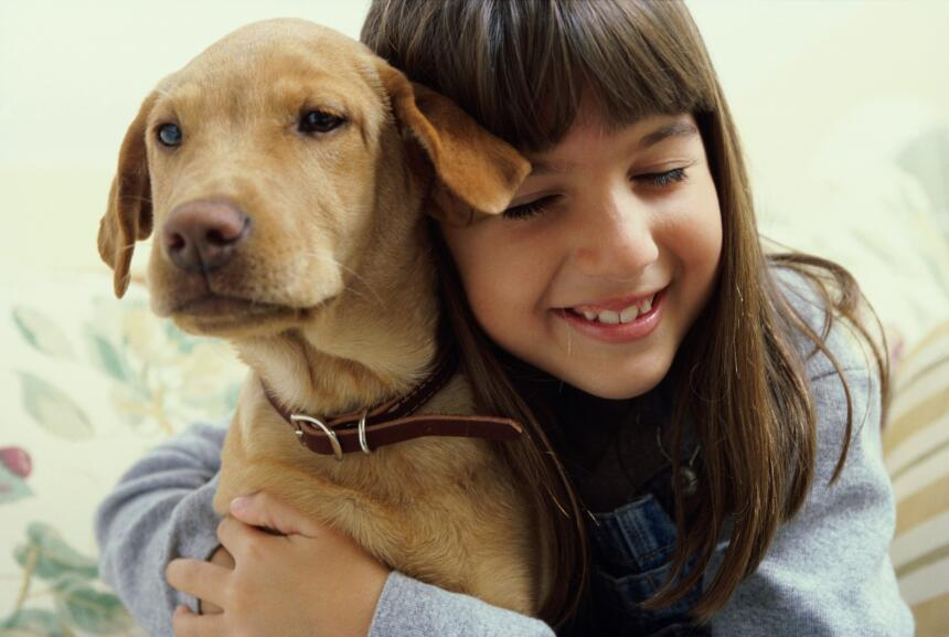Pasear al perro también es útil para liberar tensión, reducir el estrés...