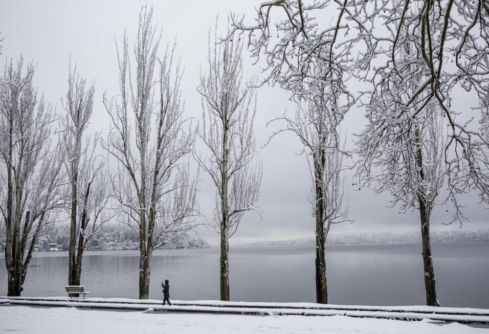 Otra tormenta de nieve y fuertes vientos vuelve a amenazar el noreste de...