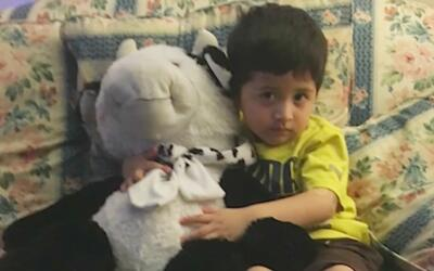 Un peluche salvó a un niño de morir al caer desde un segundo piso en Mas...