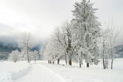 Lo más seguro es que una tormenta de invierno es lo que te haga estar en...