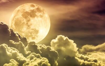 18 de junio | Tránsito lunar favorable para proyectarte de una manera mu...
