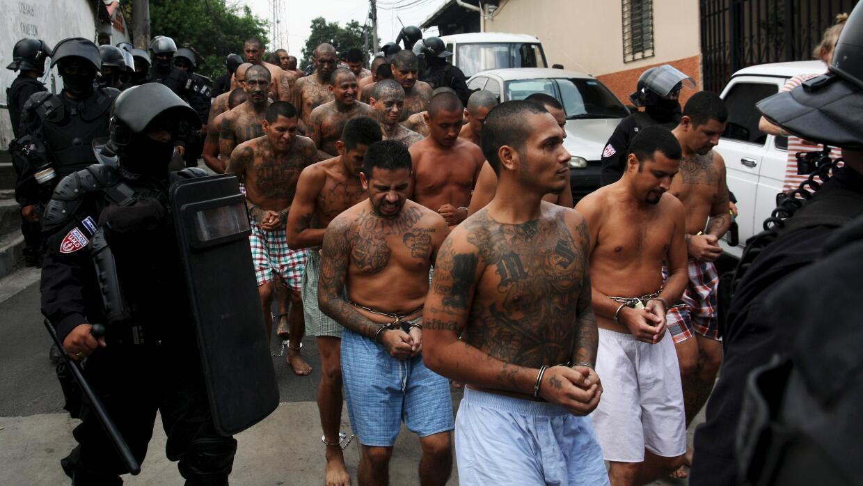 Miembros de la Mara Salvatrucha (MS-13) son escoltados por la polic&iacu...