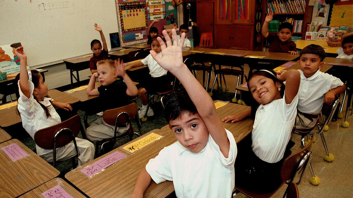 Studies show that children in dual language programs often outperform th...