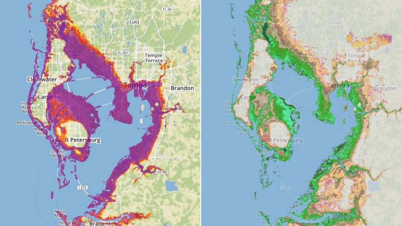 A la izquierda, en púrpura, las zonas de Tampa que se verían afectadas p...