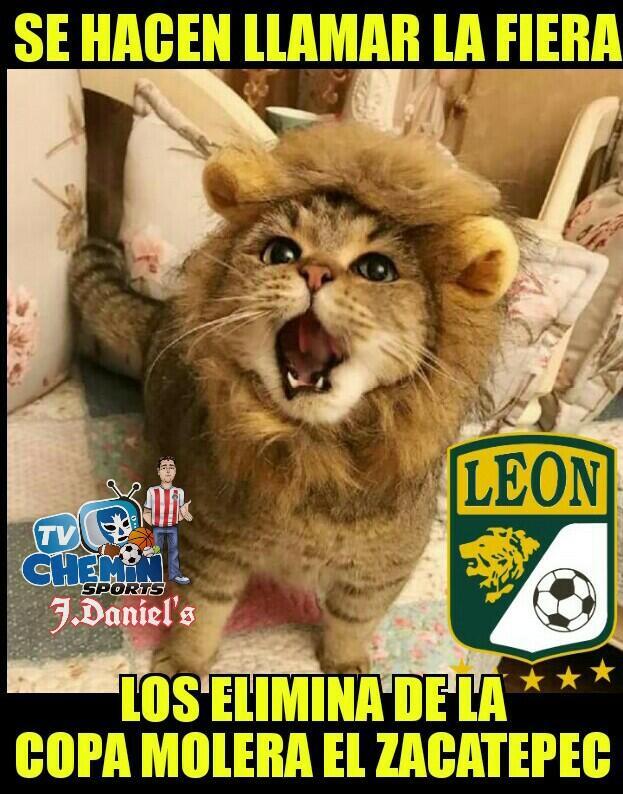 Los memes de la eliminación de  Xolos y Tigres 29136444-724984464557561-...