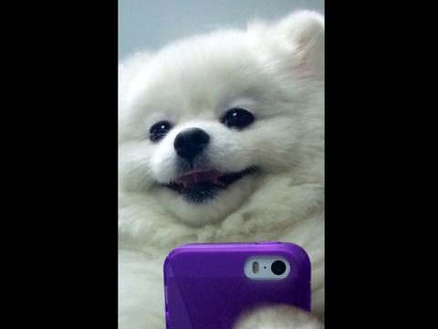 Selfies de Amor Andrade