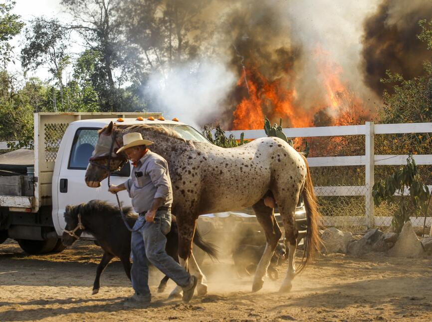 El incendio en Azusa obliga a evacuar  un rancho.