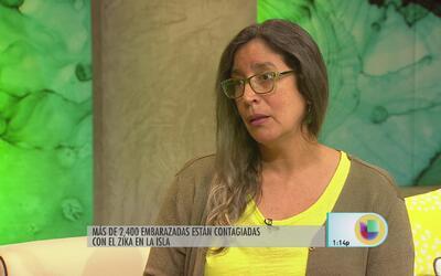 Urgen protección contra el zika en Puerto Rico