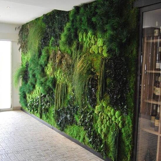 Arte verde para sanar la urbanización 248302_10156406275470080_466295306...