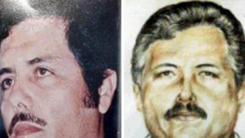 Tras la captura de Héctor Beltrán Leyva, la DEA vería al líder del cárte...