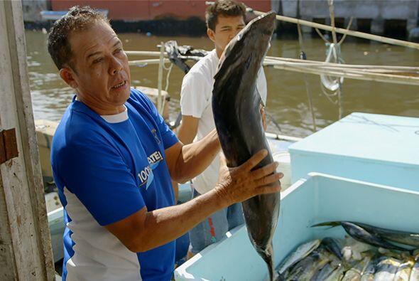 Cruz Hernández comenzó por explicarle al doctor Juan todo el proceso de...