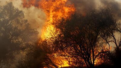 Autoridades confirman el hallazgo de una persona muerta en Agoura Hills debido al incendio Woolsey