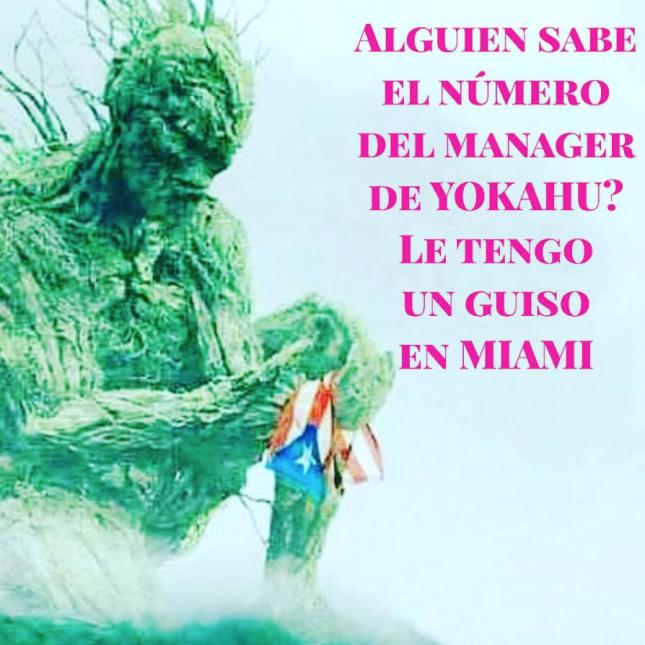 Cuando llega el huracán: conoce el mito de El Yunque y su poder protecto...